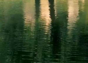Screen Shot 2013-06-17 at 11.24.44 AM