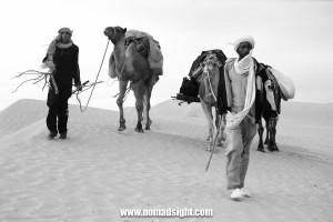 Saharas Face-2 (1)
